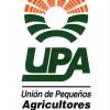 """UPA se opone a la orden propuesta por Agricultura para la replantación de almendros secos """"por ser insuficiente"""""""
