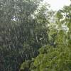 UPA destaca que la lluvia de ayer ha aliviado la situación, pero permanece la situación de sequía