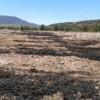 Medio Ambiente recuerda la prohibición de utilizar en verano lodos de depuradora o estiércol con fines agrícolas