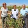 La Consejera de Agricultura da por iniciada la vendimia en Jumilla