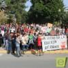 Trescientos estudiantes se manifiestan por las calles de Jumilla, en contra de la LOMCE y su reválida