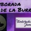 El sábado a disfrutar de la Tamborada de la Burrica