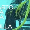 Pascal Janin impartirá una conferencia sobre el esparto en Jumilla