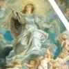 La JCHSS realizará una alfombra de serrín y una petalada en honor a Nuestra Señora de la Asunción