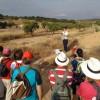 La IX Ruta de Feria de Stipa puso en valor la zona de La Celia