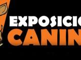 IFEPA prepara la próxima edición de la exposición canina más visitada de España
