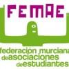 """FEMAE convoca la primera edición de las distinciones """"Educando en Participación"""""""