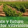 """UPA organiza en Jumilla una jornada bajo el titulo """"Presente y futuro del sector vitivinícola"""
