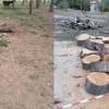 IU Verdes denuncia que el jardín Botánico de Jumilla sufre un estado importante de abandono