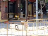 Ya han dado comienzo las obras de renovación de aceras y zona de aparcamiento de la parte sur de la avenida de Levante