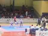 III Open internacional de taekwondo D. Quijote