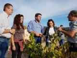El Consejero Luengo destaca que la D.O. Jumilla estima alcanzar esta campaña 70 millones de kilos de producción de uva de gran calidad