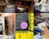 Cae un grupo delictivo en el Altiplano dedicado a la producción y distribución de drogas con 12 detenidos.