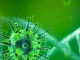 Jumilla tiene 5 casos de Coronavirus según los últimos datos oficiales.