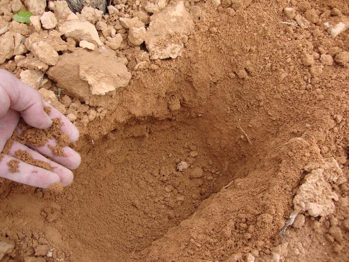 Los suelos en casa castillo y sus vinos de terru o el - Tipos de suelos para casas ...
