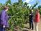 Juana Guardiola y Yolanda Fernández visitaron varias de las zonas afectadas por el pedrisco
