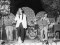 Los Yulis, la 11/53, Midas, Salicornio y Cucubeo vuelven al escenario