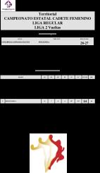 Clasificaciones Balonmano 16 y 17 ENERO - 2016-36
