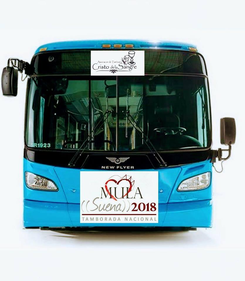 Bus Mula