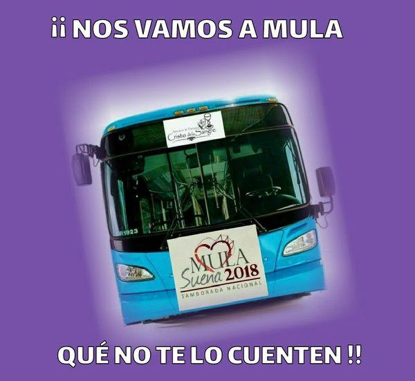 Foto Bus Mula
