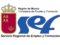 El SEF lanza una docena de ofertas de 'Becas Experiencia' para jóvenes en paro